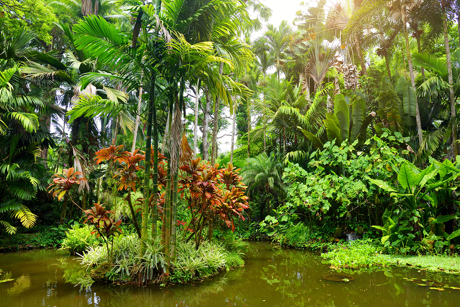A Visit To Kahanu Garden Is Worth Your Time When Visiting Hana, Maui